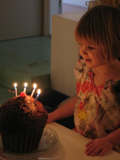 4th birthday party