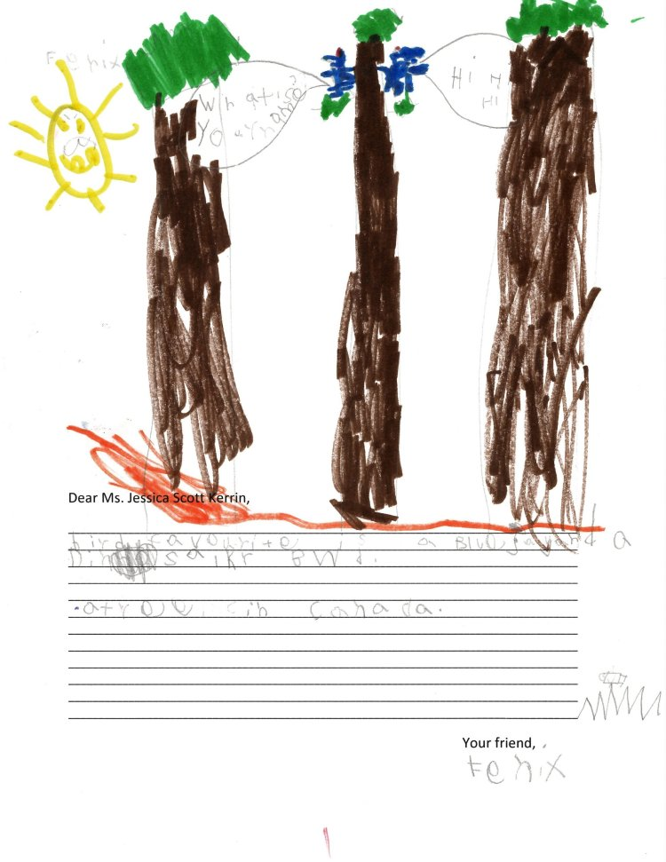 Child's drawing of three trees with bluejays