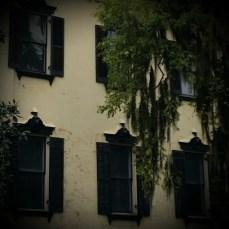 Savannah, Georgia Windows