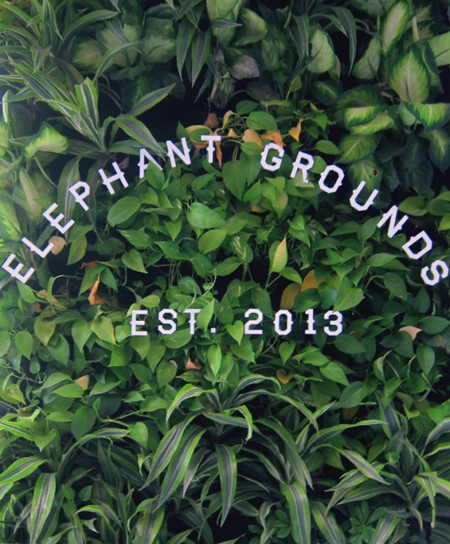 hong kong green wall elephant grounds store