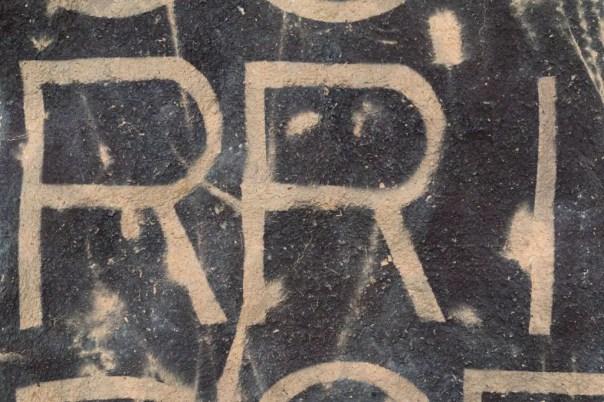 Saprophyte XI (detail). 55cm x 80 cm