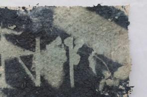 Saprophyte V (detail). 20cm x 42 cm
