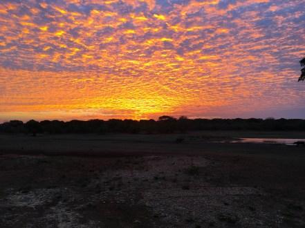 Sri Lanka: the sunrise over Yala National Park