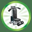 Trophée Gonflé à bloc (Faire atteindre le plus haut niveau de la compétence Fitness à un Sim)