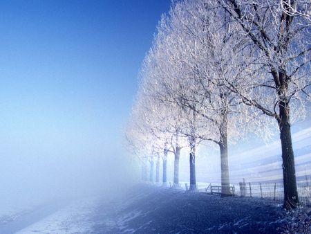 Прекрасные обои на тему зимы