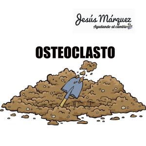 OSTEOCLASTO jesús márquez nutrición