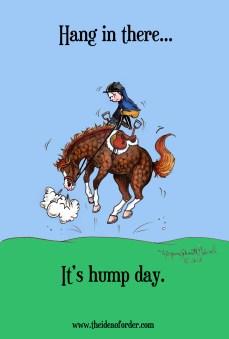 2013-9-4-hump-day