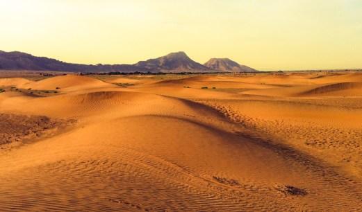 desert sunrise 2