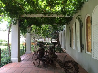 South Africa's Western Cape winelands