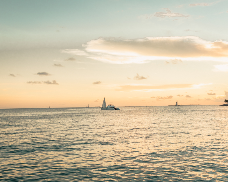 Picture of a catamaran sunset sail a must do in Key West.