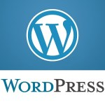 Wordpress 301 redirect
