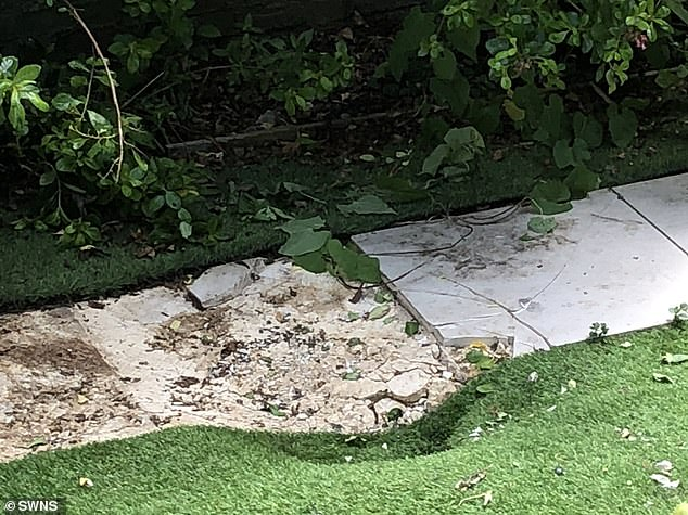 The force of the body falling from the Kenya Airways plane from Nairobi to London Heathrow dented paving slabs and astroturf in this garden in Clapham, South London PHOTO: SWNS