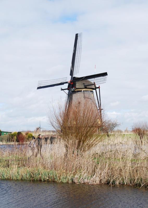 Kinderdijk-Rotterdam-32