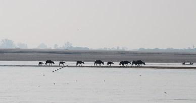 Bagan to Mandalay 44