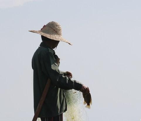 Fishermen of Inle Lake 16