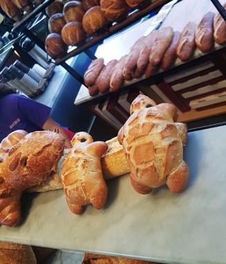 Boudin Bakery 21