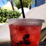 Very Berry Mojito at ARIA Resort & Casino | The JetSet Family