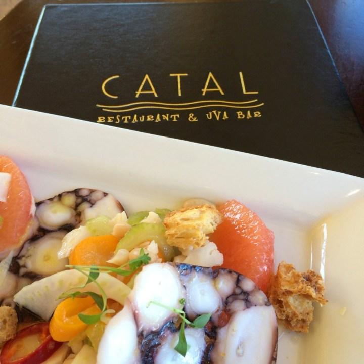 Catal Restaurant   Downtown Disney