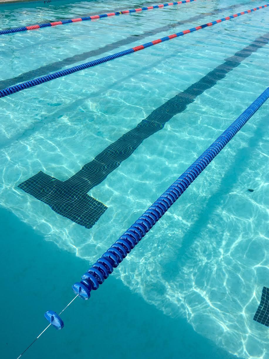 Love Your Bones - Swim