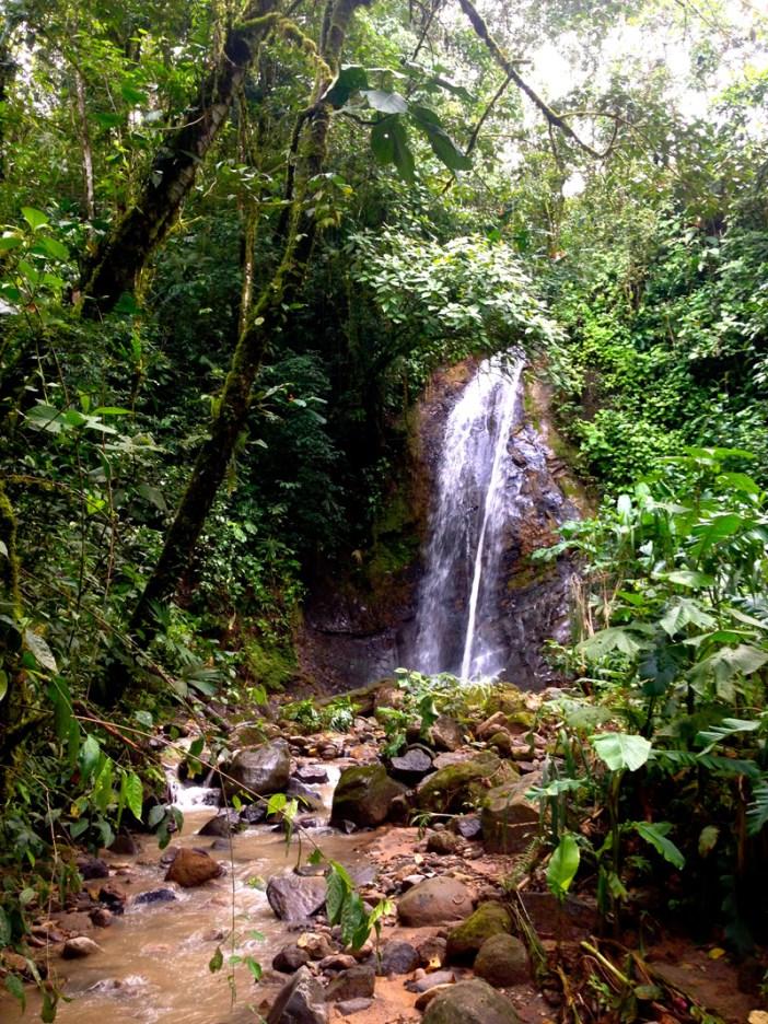 San Vito, Costa Rica 1