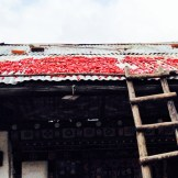 Drying chili on rooftop