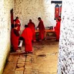 Lamas at lunch (Buddhist University, Thimphu)