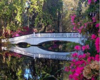 Get your southern charm in Charleston, South Carolina this spring. Magnolia Plantation oozes scent of the secret garden.