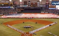 Tampa Bay Ray baseball