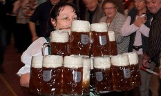 In 2008, Bavarian native Anita Schwarz broke a Guinness world record when she carried 19 maßes full of beer—each one weighing 3.2 kg (7 lbs) and totaling just under 45 kg (100 lbs)—at one time, walking over a distance of 40 meters (131 feet), without losing a single drop of beer!