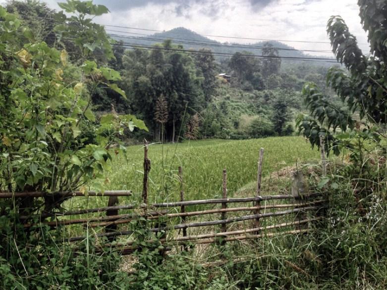 Chiang Mai Thailand countryside