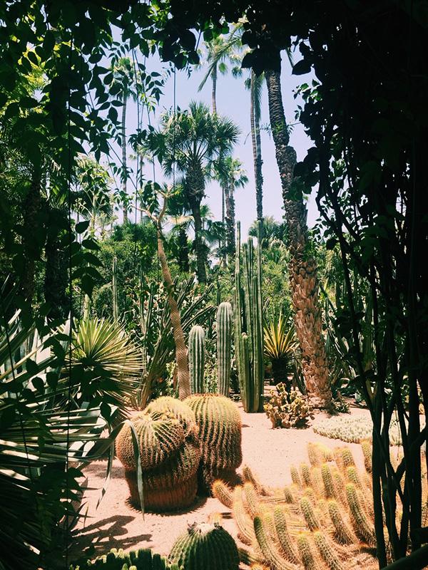 Marjoelle Garden.