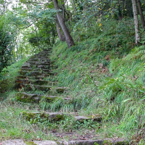 Overgrown stone steps along path on Monte Urgull in San Sebastian, Spain