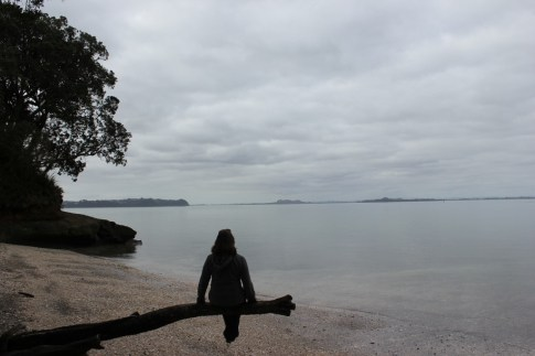 Sitting on a tree branch looking at the water on beach in Titirangi, Auckland, NZ