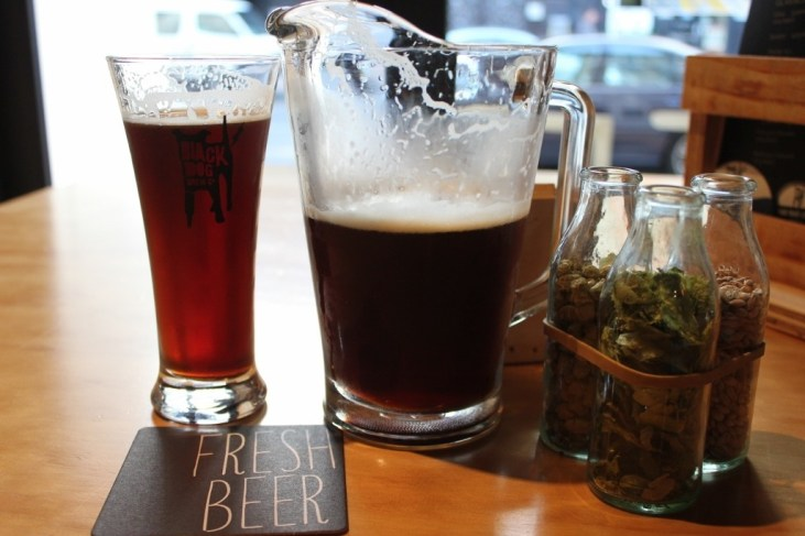 Jug of Clifford Red IPA at Black Dog Brewery in Wellington, New Zealand