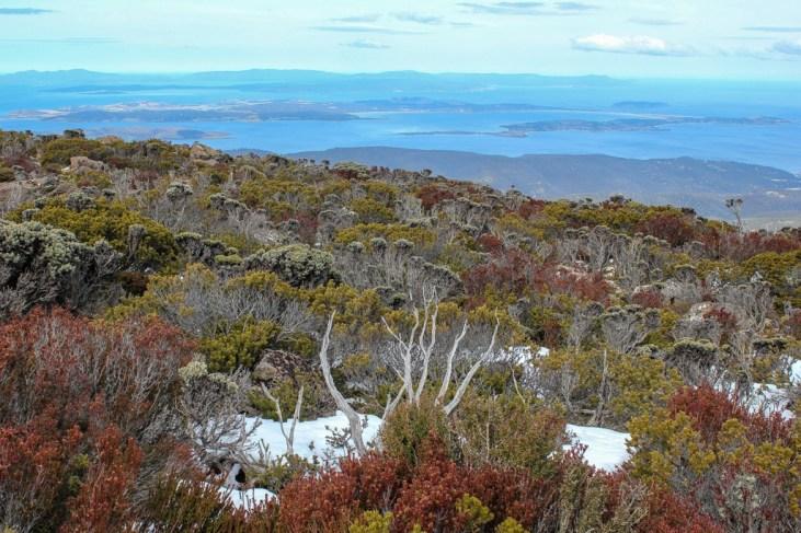Snow on the summit of Mt Wellington, Hobart, Tasmania, Australia