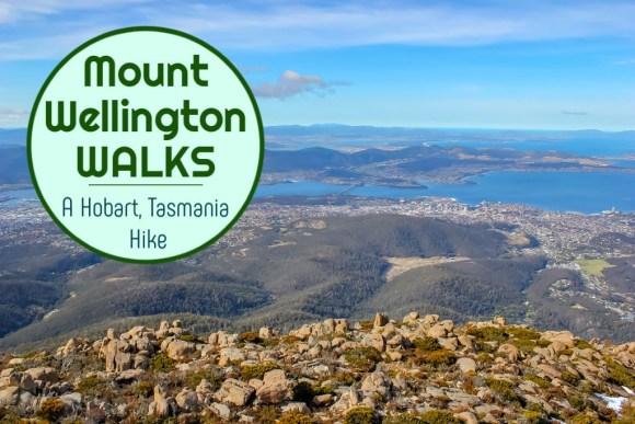 Mount Wellington Walks: A Hobart, Tasmania Hike by JetSettingFools.com