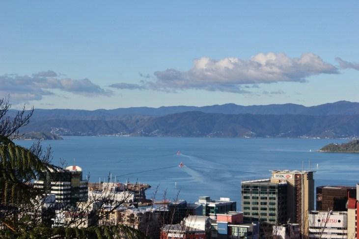 Wellington, New Zealand City View from Wellington Botanic Garden views
