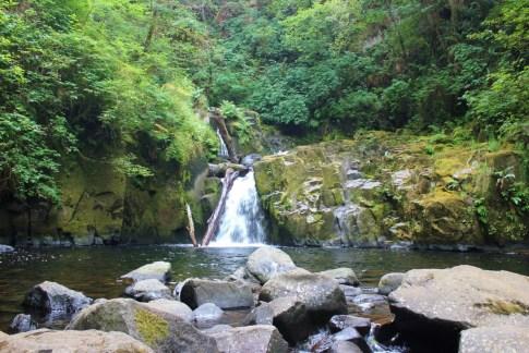 Sweet Creek Waterfalls, one of the hikes near Florence, Oregon