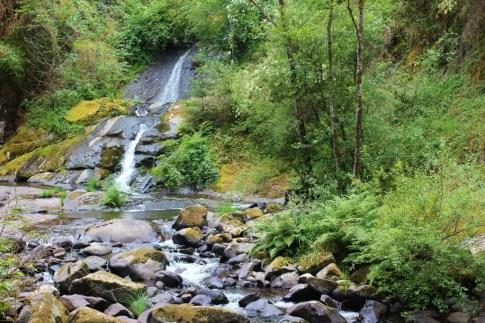 Waterfalls on Sweet Creek Falls Trail