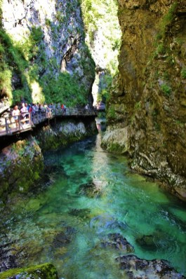 Narrow gorge and river at Vintgar Gorge near Lake Bled, Slovenia