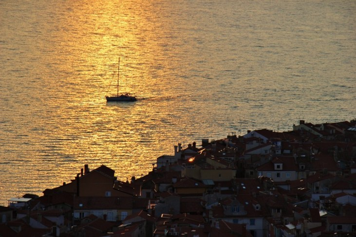 Boat sails through the shimmering water lit by sunset in Piran, Slovenia
