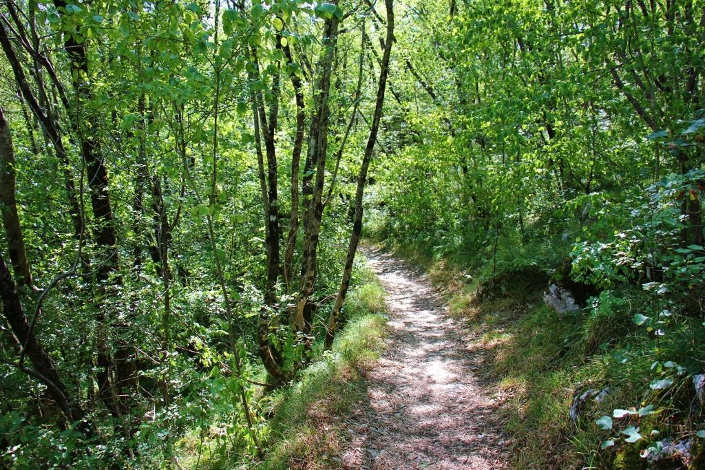 biking-walking-trail-to-skocjan-caves-slovenia