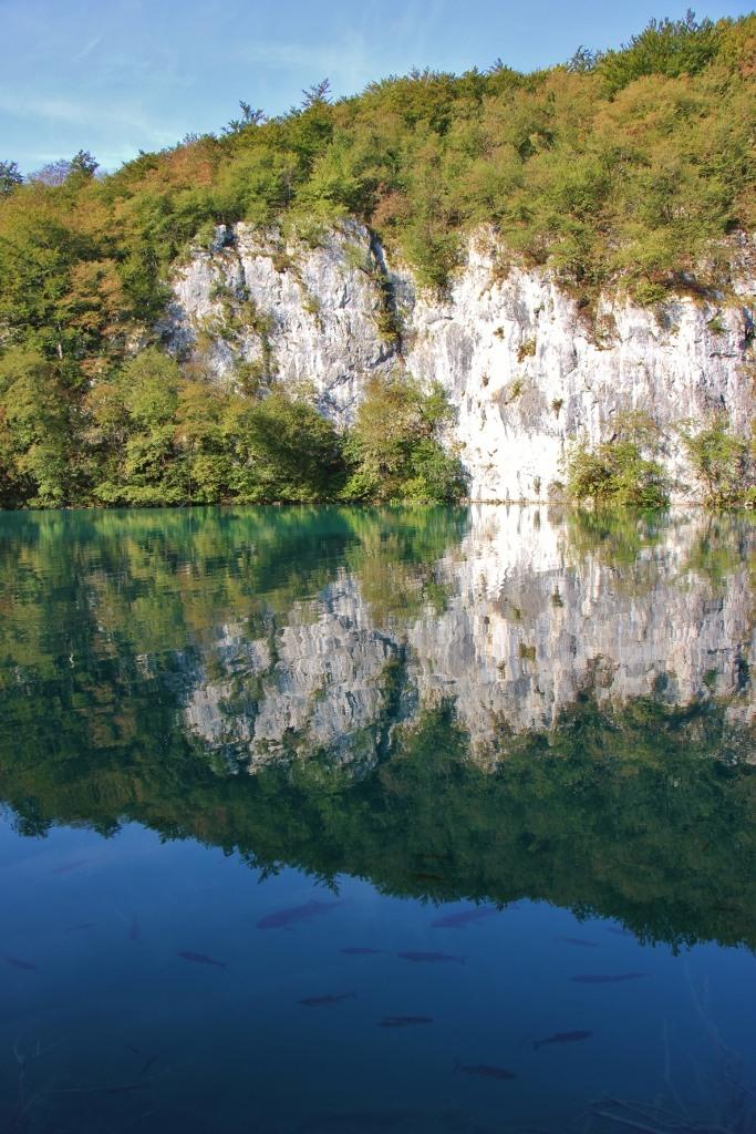 Fish swim below mountain reflection, Lower Lakes, Plitvice Lakes National Park, Croatia