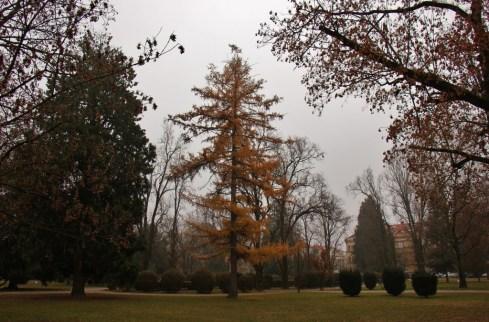 Municipal Park of Petar Kresimir IV in Osijek, Croatia in wintertime