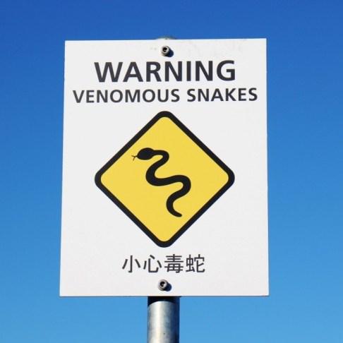 Venomous Snake Warning Sign, Great Ocean Road, Australia, JetSettingFools.com