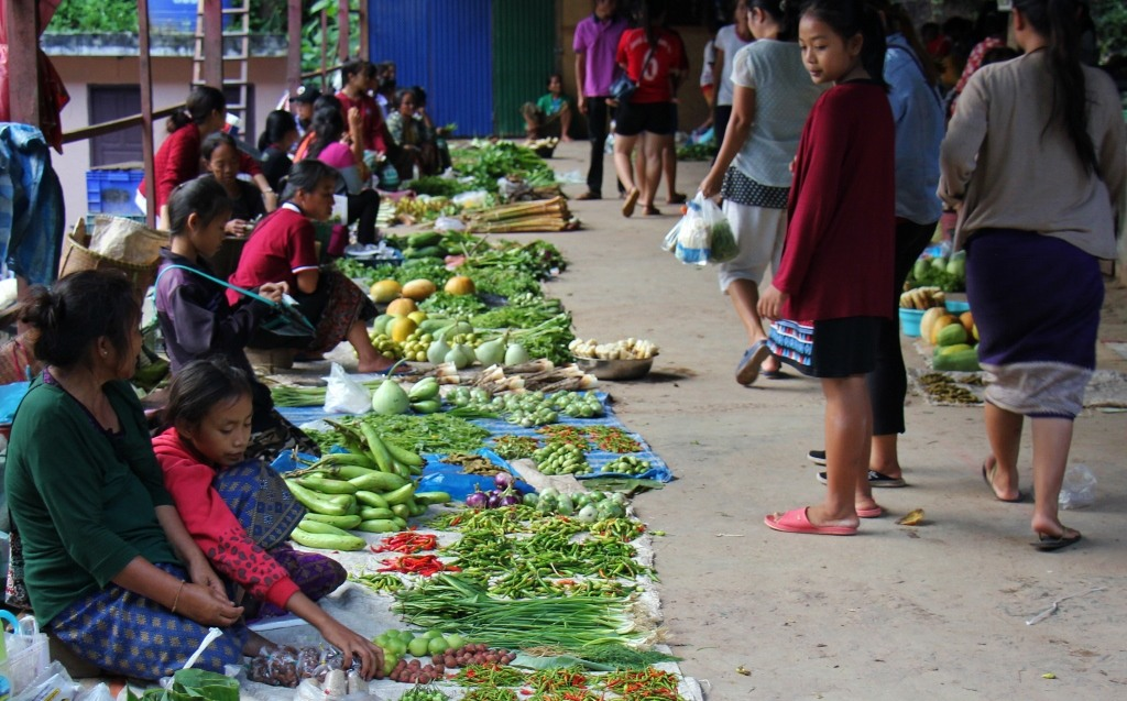 Fresh produce market in Pakbeng, Laos