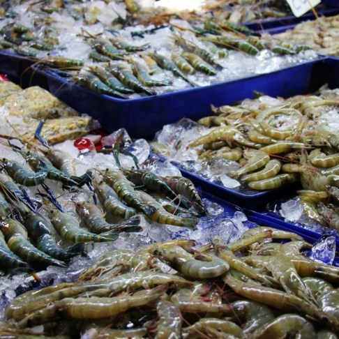 Fresh shrimp and fish for sale at Morning Market in Chiang Rai, Thailand