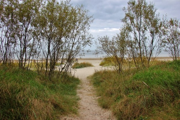 Sandy path to the beach in Jurmala, Latvia