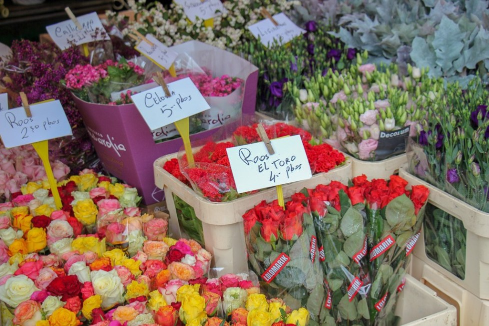 Flowers for sale at Saturday market in Grote Markt Haarlem, Netherlands