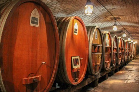 Wine barrels at the historic wine cave in Strasbourg, France